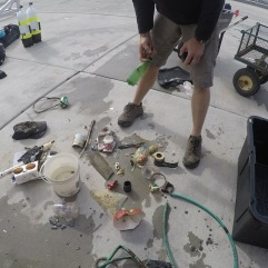 Sifting through the debris for little critters, to be returned to the water.